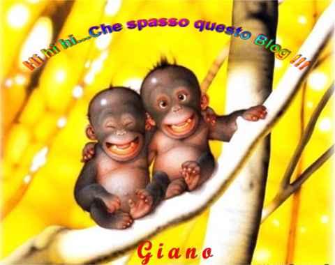 Scimmie_Blog