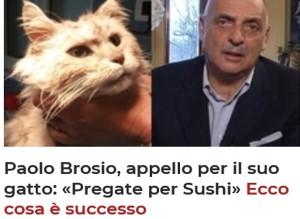Brosio Sushi